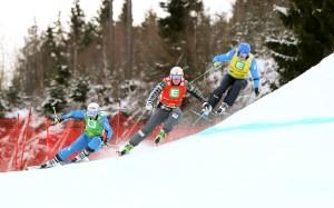 FREE STYLE - FIS WC Kreischberg, Ski Cross, Damen