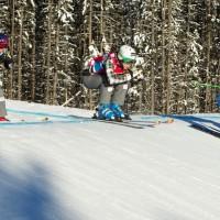 FREE STYLE - FIS WC Nakiska, Skicross, Damen